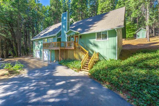 3175 Amber Trail, Pollock Pines, CA 95726 (MLS #20063845) :: Dominic Brandon and Team