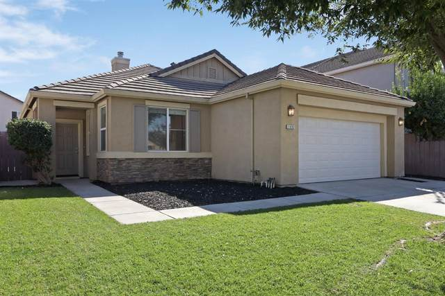 1482 Swallow Tail Lane, Manteca, CA 95337 (MLS #20064264) :: Paul Lopez Real Estate