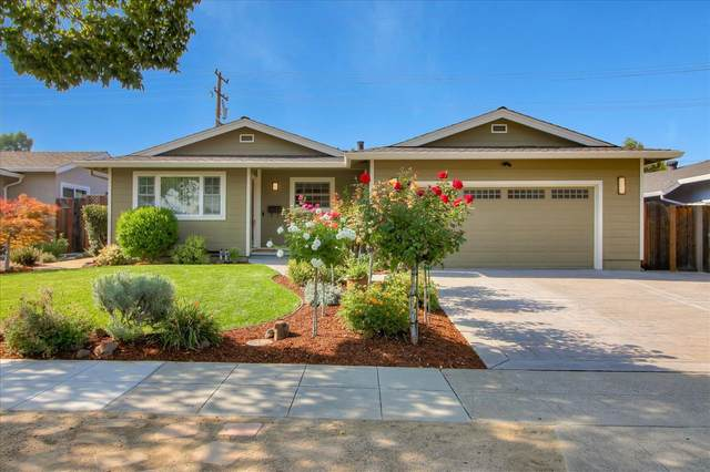 1591 Princeton, San Jose, CA 95118 (MLS #20064313) :: Keller Williams - The Rachel Adams Lee Group