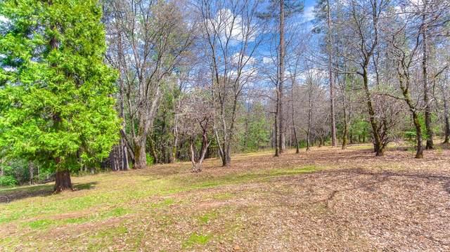 3441 Chipmunk Trail, Georgetown, CA 95634 (MLS #20064517) :: Paul Lopez Real Estate
