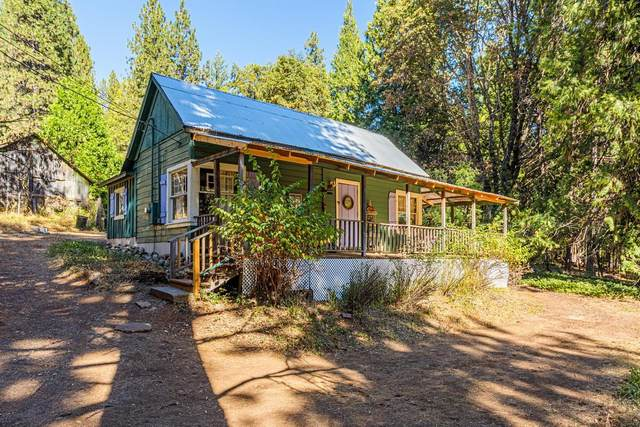 10353 Grizzly Flat Road, Grizzly Flats, CA 95636 (MLS #20064588) :: The Merlino Home Team