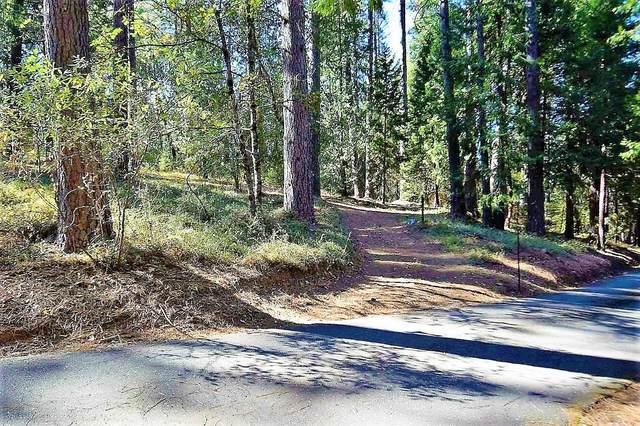 10376 Smith Road, Grass Valley, CA 95949 (MLS #20064599) :: Keller Williams - The Rachel Adams Lee Group