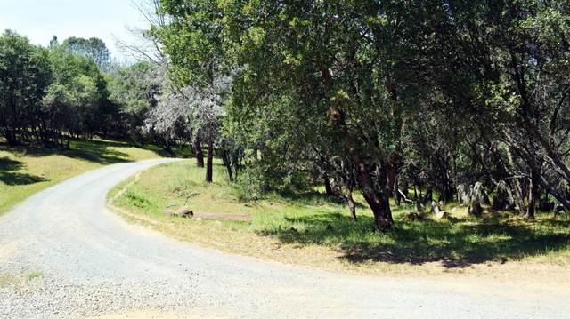 0 Garden Bar Road, Auburn, CA 95648 (MLS #20064966) :: Paul Lopez Real Estate