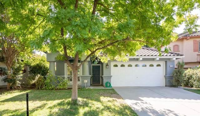 9128 Rizes Way, Elk Grove, CA 95758 (MLS #20065074) :: Heidi Phong Real Estate Team