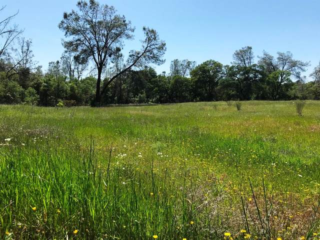 6241 Sandstone Lane, Browns Valley, CA 95918 (MLS #20065089) :: eXp Realty of California Inc