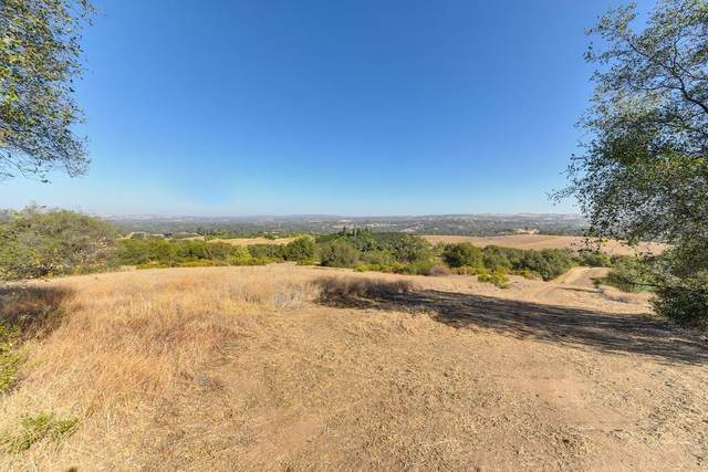 6000 State Highway 193, Newcastle, CA 95658 (MLS #20065161) :: 3 Step Realty Group