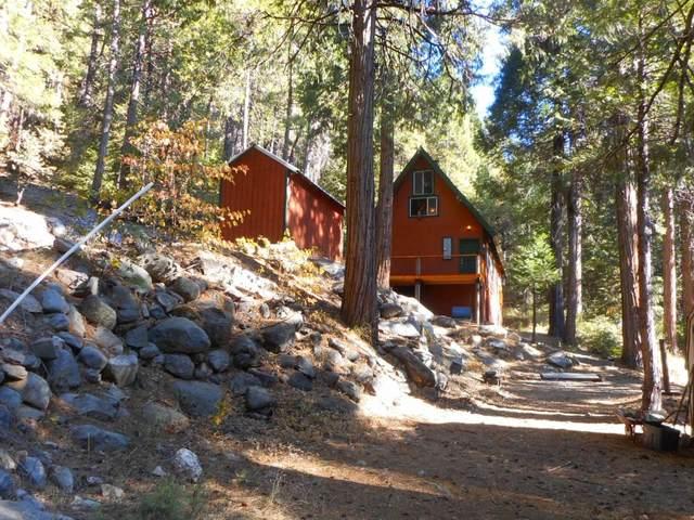 12764 Zeibright Road, Nevada City, CA 95959 (MLS #20065667) :: Heidi Phong Real Estate Team