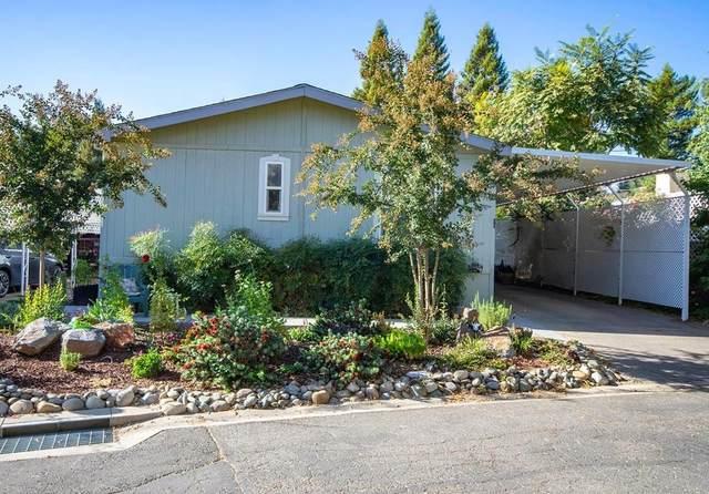 350 Pleasant Valley Road #74, Diamond Springs, CA 95619 (MLS #20065694) :: Heidi Phong Real Estate Team
