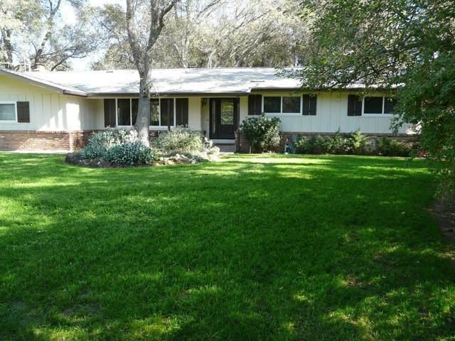 7990 Gilardi Road, Newcastle, CA 95658 (MLS #20065820) :: Paul Lopez Real Estate