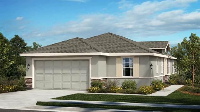 870 Camborne Drive, Manteca, CA 95336 (MLS #20066086) :: REMAX Executive