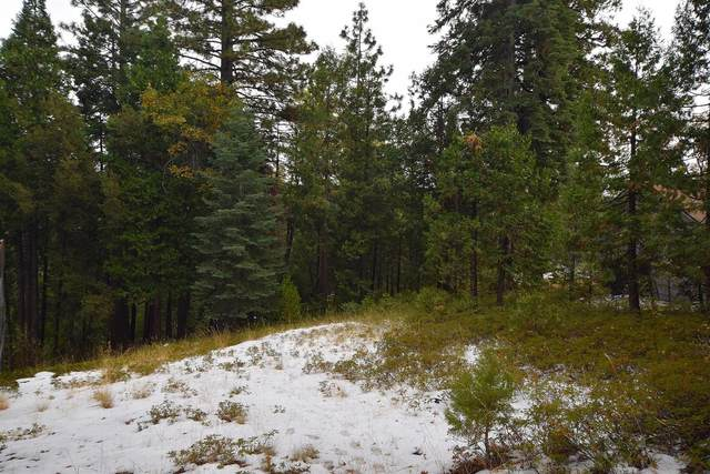 28909 E Snowwhite Ridge Drive, Cold Springs, CA 95335 (MLS #20068427) :: Keller Williams - The Rachel Adams Lee Group