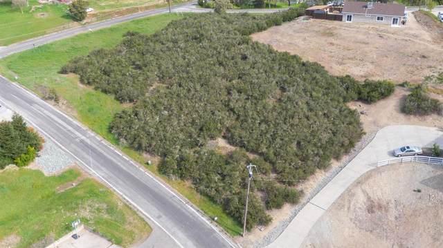 3549 Laurent Drive, Valley Springs, CA 95252 (MLS #20069079) :: Paul Lopez Real Estate