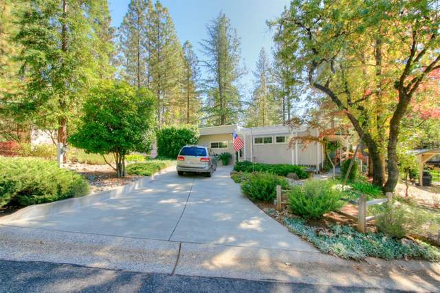 18666 Douglas Drive, Applegate, CA 95703 (MLS #20070211) :: Keller Williams Realty