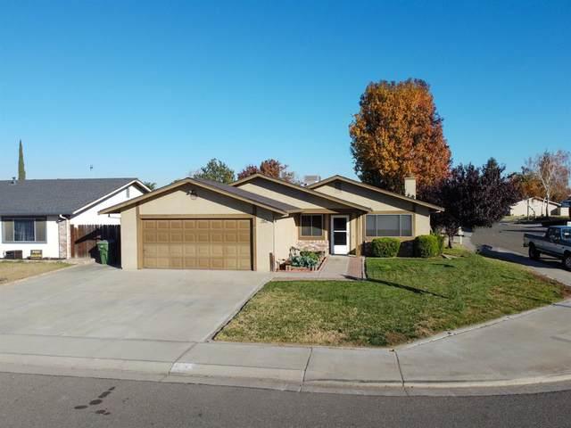 262 Blossom Drive, Ripon, CA 95366 (MLS #20070458) :: REMAX Executive