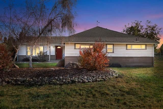 8302 Rodden Road, Oakdale, CA 95361 (MLS #20070628) :: Heidi Phong Real Estate Team