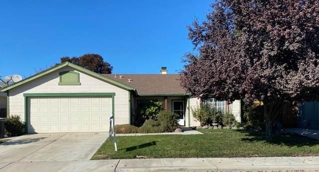 713 Lady Slipper, Newman, CA 95360 (MLS #20070819) :: Heidi Phong Real Estate Team