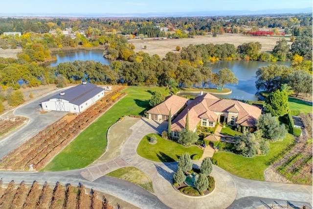 10520 Menlo Oaks Ct, Elk Grove, CA 95624 (MLS #20070986) :: Heidi Phong Real Estate Team