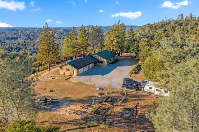 20750 Canyon View Drive, Jackson, CA 95642 (MLS #20071098) :: Keller Williams - The Rachel Adams Lee Group