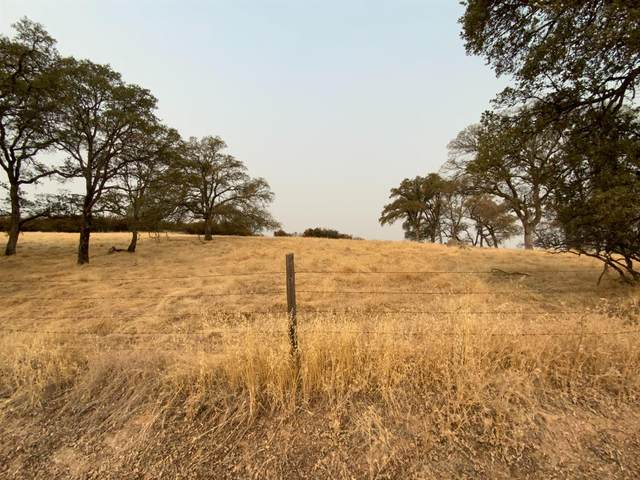 0 000 Vaira Ranch Road, Ione, CA 00000 (MLS #20071201) :: 3 Step Realty Group