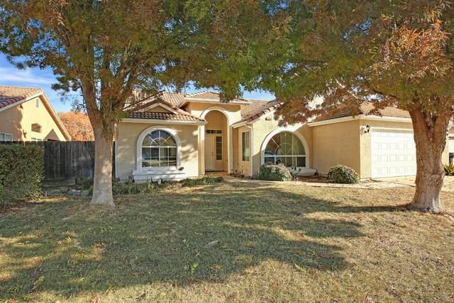 2132 Great Falls Road, Newman, CA 95360 (MLS #20071217) :: Heidi Phong Real Estate Team