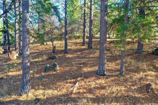 18885 Norlene Way, Grass Valley, CA 95949 (MLS #20073350) :: eXp Realty of California Inc