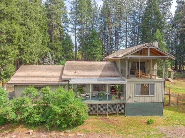 19071 Allan Rd W, Volcano, CA 95689 (MLS #20074033) :: 3 Step Realty Group