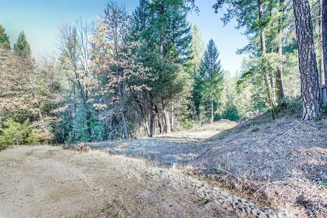 3515 Amapola Court, Pollock Pines, CA 95726 (MLS #20074595) :: 3 Step Realty Group