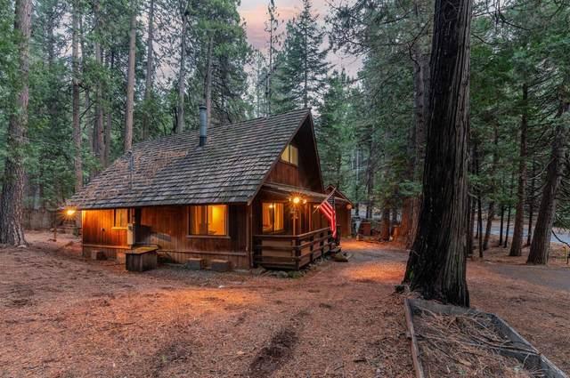26615 Sugar Pine Drive, Pioneer, CA 95666 (MLS #20074803) :: Paul Lopez Real Estate