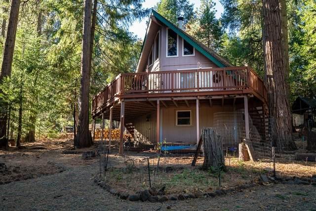 26964 Silver Drive, Pioneer, CA 95666 (MLS #20075051) :: Paul Lopez Real Estate