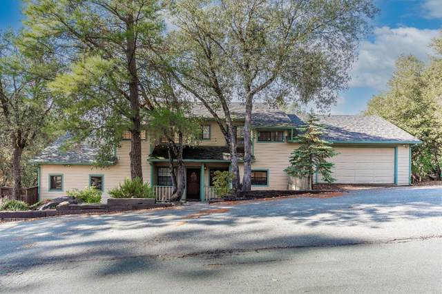 13887 Druid Lane, Pine Grove, CA 95665 (MLS #20075417) :: Keller Williams Realty