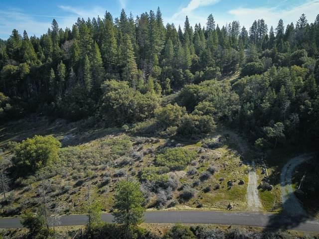 19460 Ponderosa Drive, Pioneer, CA 95666 (MLS #20075634) :: Paul Lopez Real Estate
