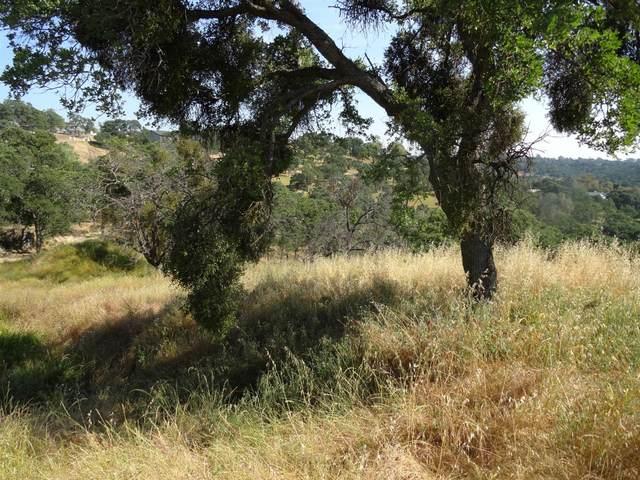3623 Hanley, Valley Springs, CA 95252 (MLS #20075942) :: Paul Lopez Real Estate