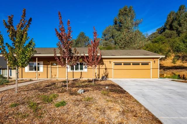 1463 American River Trail, Cool, CA 95614 (MLS #20076243) :: Paul Lopez Real Estate