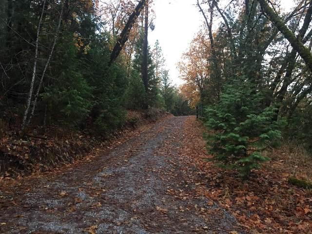 18488 Ponderosa Annex Road, Sutter Creek, CA 95685 (MLS #20076281) :: Keller Williams - The Rachel Adams Lee Group