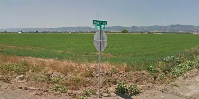 0 County Road 25, Esparto, CA 95627 (MLS #20076900) :: 3 Step Realty Group