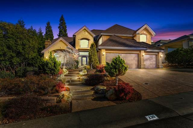 230 American River Canyon Drive, Folsom, CA 95630 (MLS #20076976) :: REMAX Executive