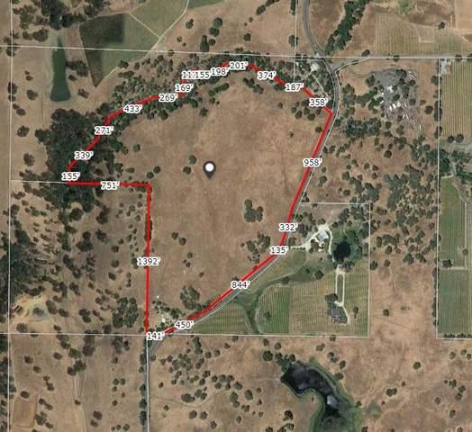 10105 Shenandoah Road, Plymouth, CA 95669 (MLS #20077004) :: Live Play Real Estate | Sacramento