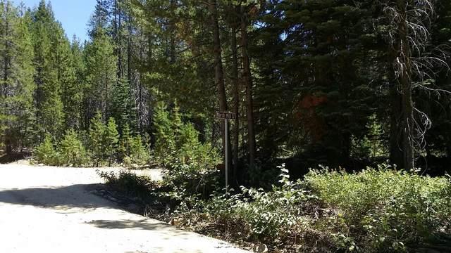 38150 Meadow Lake Road, Nevada City, CA 95959 (MLS #20077144) :: The MacDonald Group at PMZ Real Estate