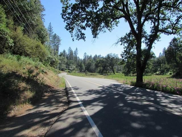 17400 Placer Hills Road, Meadow Vista, CA 95722 (MLS #20077690) :: REMAX Executive