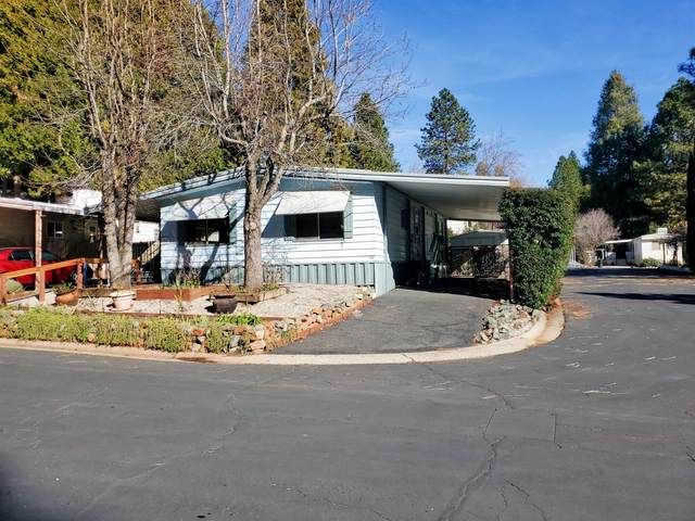 55 Primrose Lane, Grass Valley, CA 95945 (MLS #20078204) :: 3 Step Realty Group