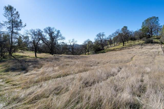 1056 Trails End Drive, Placerville, CA 95667 (MLS #20078466) :: Deb Brittan Team