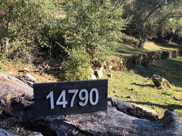 14790 Shake Ridge Road, Sutter Creek, CA 95685 (MLS #20078738) :: 3 Step Realty Group