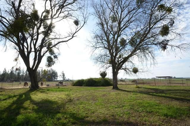 10576 Arno Road, Galt, CA 95632 (MLS #20079806) :: Keller Williams Realty