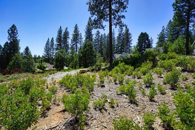 520 Lost Hill Court, Nevada City, CA 95959 (MLS #20079841) :: 3 Step Realty Group