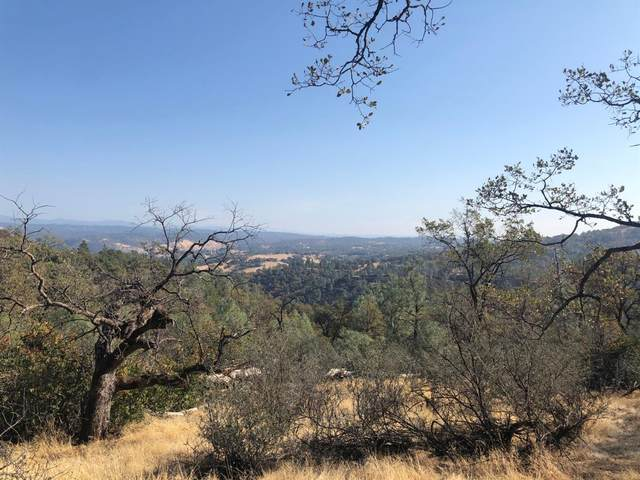 0 Arrowbee Drive, Placerville, CA 95667 (MLS #20080857) :: The MacDonald Group at PMZ Real Estate