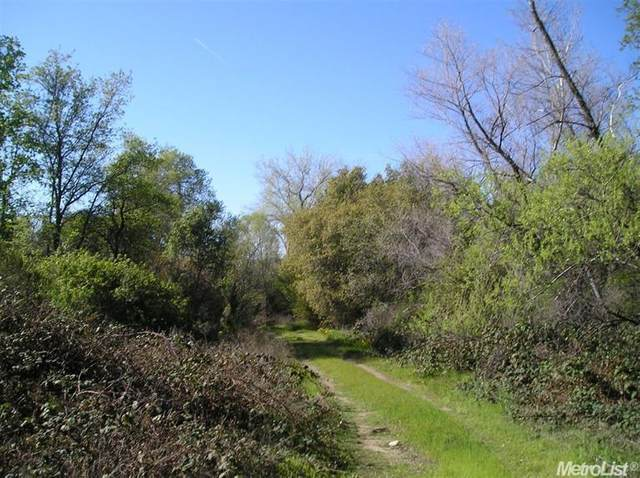 3130 Penryn Road, Penryn, CA 95663 (MLS #20081369) :: Live Play Real Estate | Sacramento