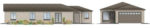 2453 E Hatch Road, Modesto, CA 95307 (MLS #20081577) :: Live Play Real Estate | Sacramento