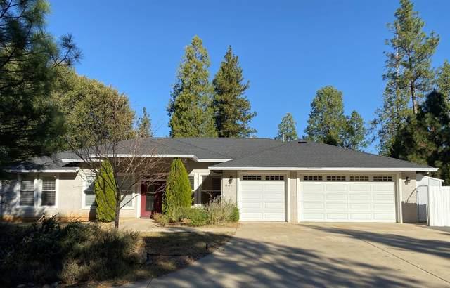 12199 Jackson Pines Drive, Jackson, CA 95642 (MLS #20082635) :: Live Play Real Estate | Sacramento