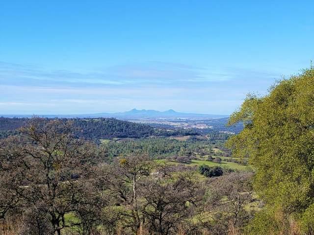 0 Dutch Flat Trail, Smartsville, CA 95977 (MLS #202100249) :: Deb Brittan Team