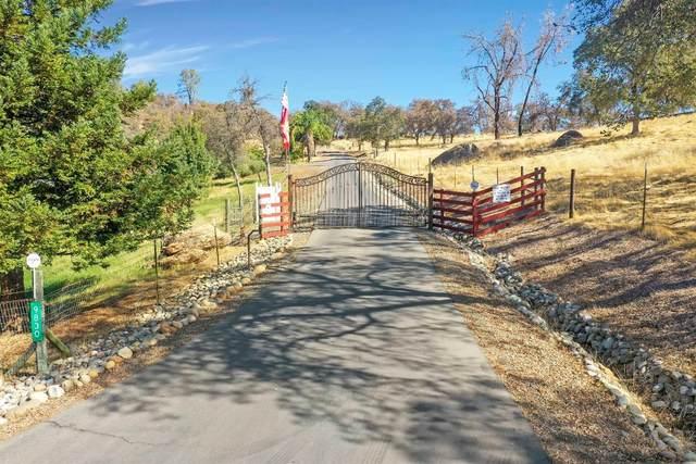 0 Deer Hollow Trail, Browns Valley, CA 95918 (MLS #202101167) :: Keller Williams - The Rachel Adams Lee Group
